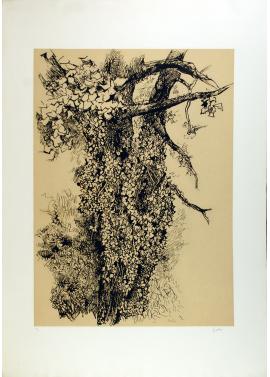 Renato Guttuso Tree 70x100